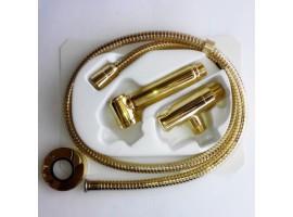 Набор для гигиенического душа Bossini Alexa-Bras C69004B золото
